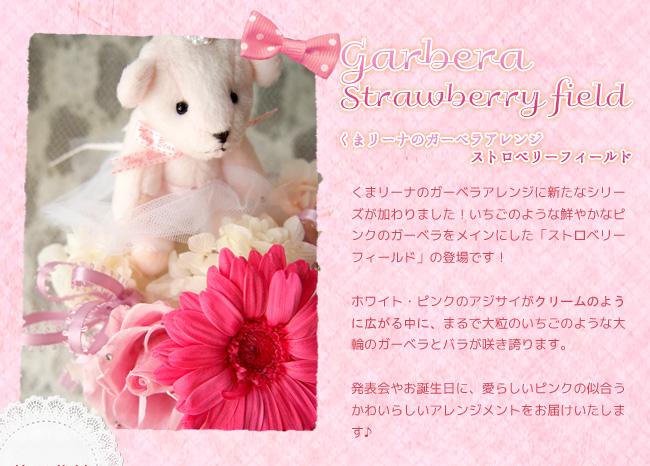 くまリーナのガーベラアレンジに新たなシリーズが加わりました!いちごのような鮮やかなピンクのガーベラをメインにした「ストロベリーフィールド」の登場です!ホワイト・ピンクのアジサイがクリームのように広がる中に、まるで大粒のいちごのような大輪のガーベラとバラが咲き誇ります。発表会やお誕生日に、愛らしいピンクの似合うかわいらしいアレンジメントをお届けいたします♪